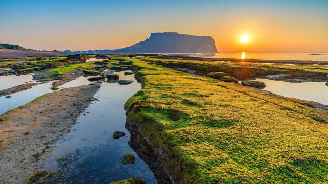 Insider Tips: direction l'île de Jeju, en Corée du Sud