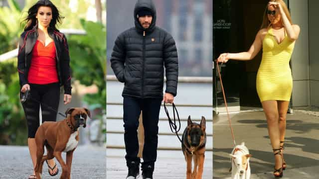 Leash roles: Celebrities walking their dogs