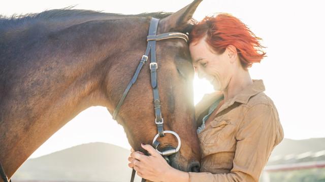 Det smukke bånd mellem kæledyr og ejere