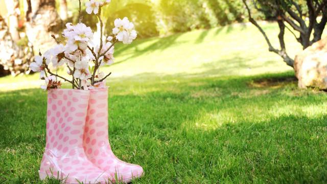 Tips og tricks til at gøre din have forårsklar