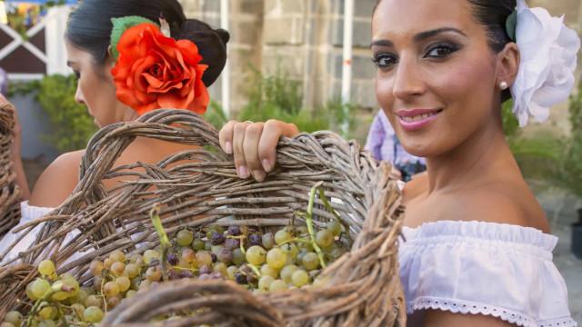 Besök Spaniens förtrollande sherry-triangel
