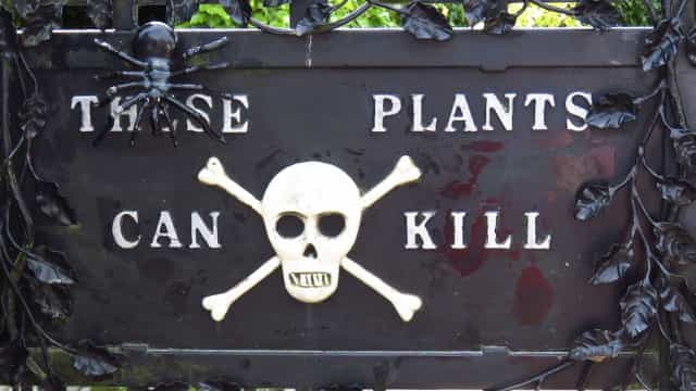 Inside the world's deadliest garden
