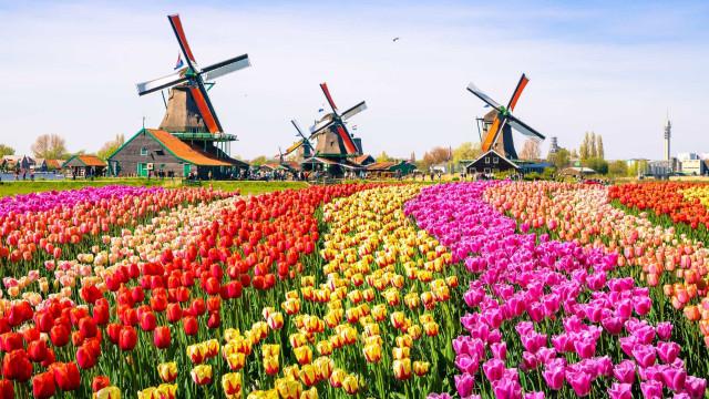 Annorlunda vanor i Nederländerna