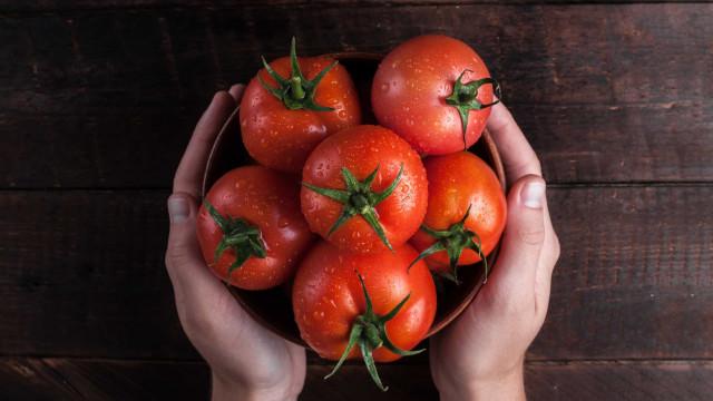 Waarom tomaten ongelukkig zijn in je koelkast