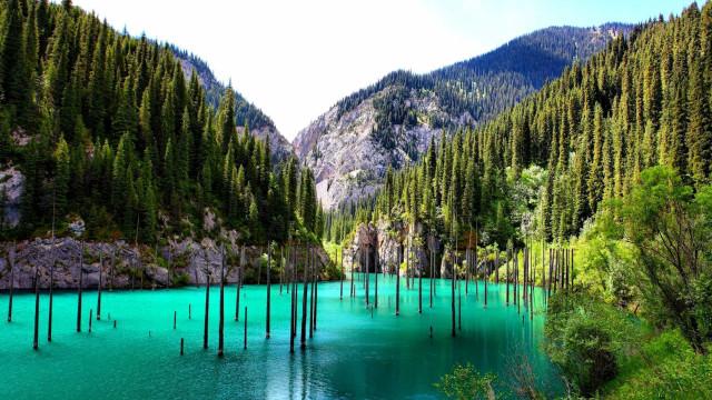 Kaindy-järven hämmästyttävä uponnut metsä