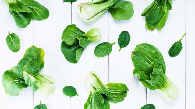Deze ingrediënten zouden onze planeet moeten redden