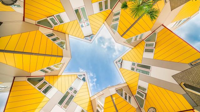 Ontdek Rotterdam, stad van de architectuur!
