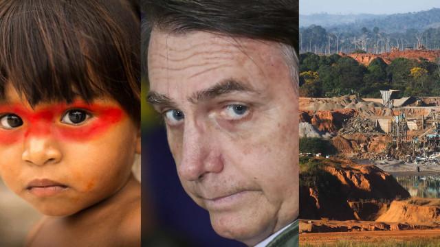 Amazonas: leyendas y misterios del pulmón que peligra con Bolsonaro