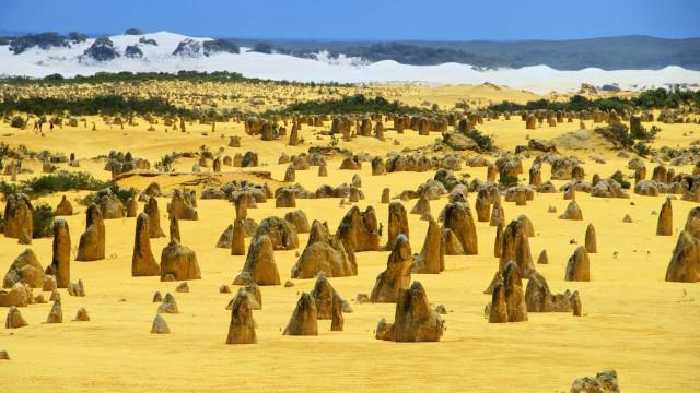 Bli med og opplev Pinnacles, et av de rareste ørkenlandskapene i verden