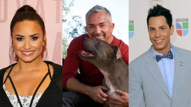 Las celebridades nos cuentan sus pensamientos suicidas