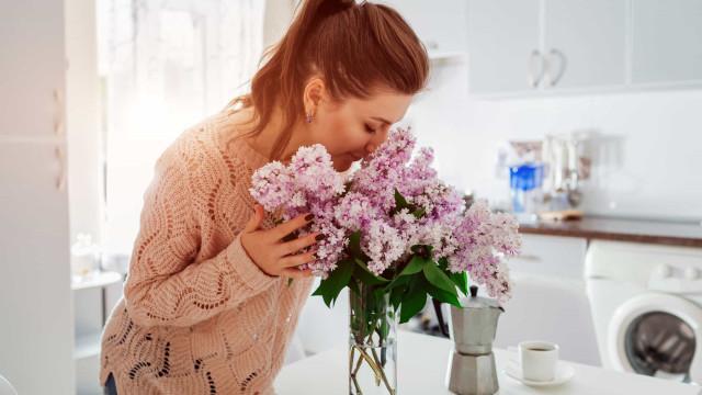 Stress verminderen? Zorg voor bloemen in huis