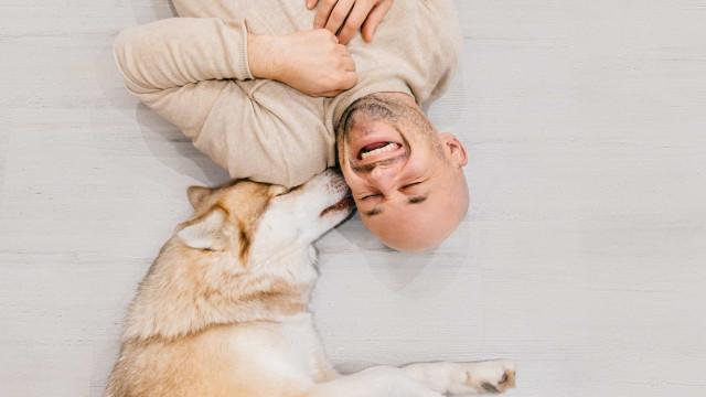 Ist Ihr Hund glücklich? Diese Anzeichen verraten es Ihnen