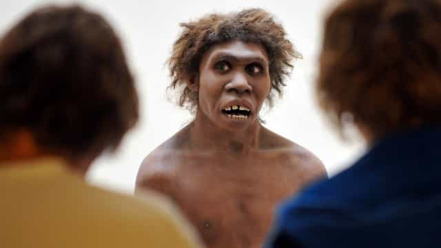 """Ghost population"" discovered: who are these ancient humans?"