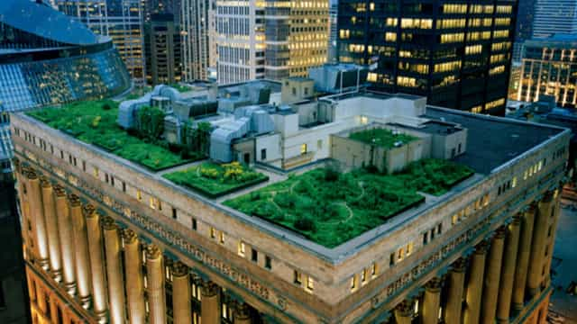 Gardens in the sky: amazing green roofs from around the world