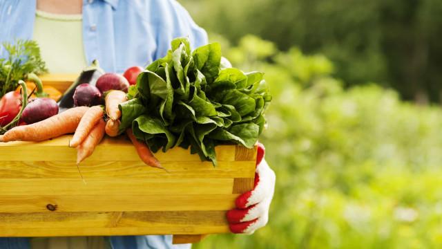 ¿Es la comida orgánica buena para ti?
