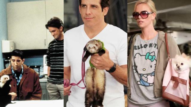 Ces acteurs n'ont pas aimé jouer avec des animaux!