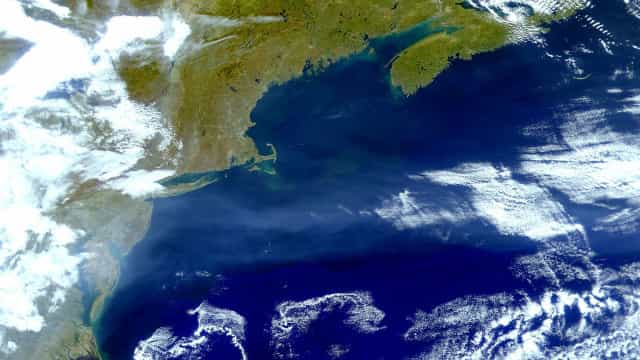 How the Gulf Stream affects global climate