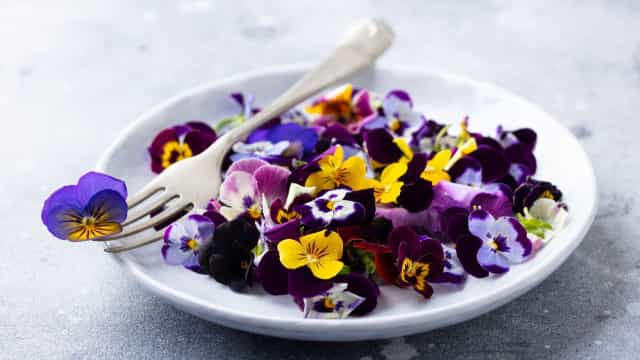 오감으로 즐길 수 있는 화려한 식감의 식용 꽃들