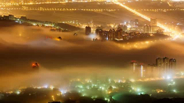 Light pollution and its harmful effect on wildlife
