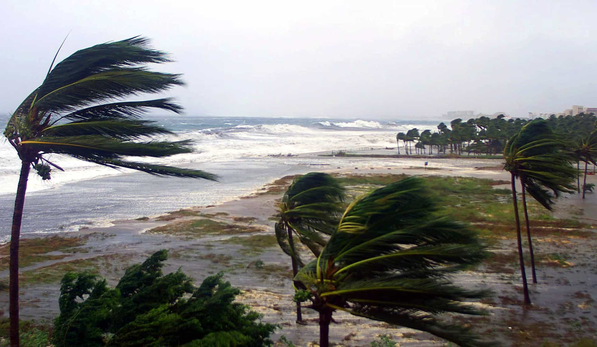 The world's most devastating tropical storms