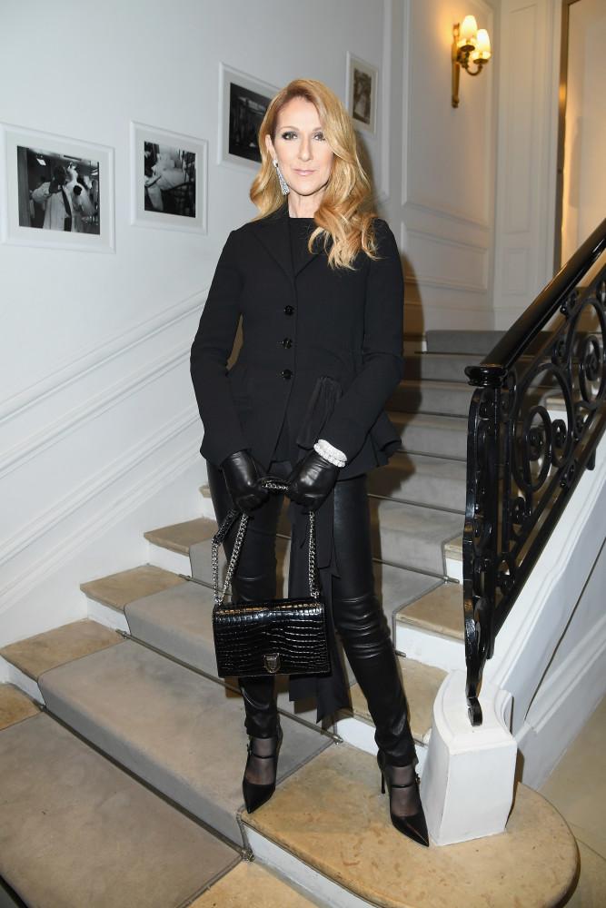Céline Dion: Como era e como é agora o estilo da cantora