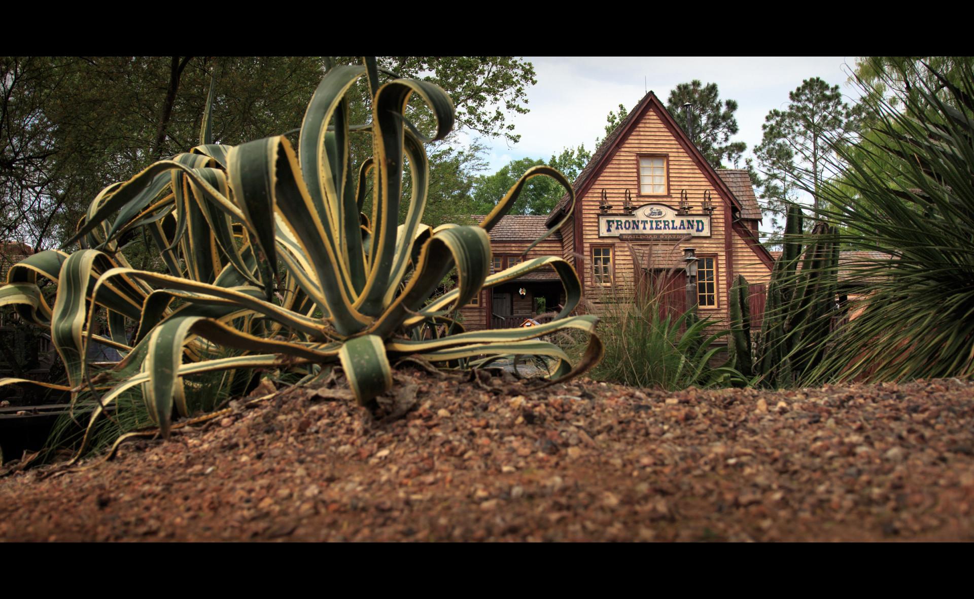 95 años de magia: el mundo oculto tras los parques de Disney
