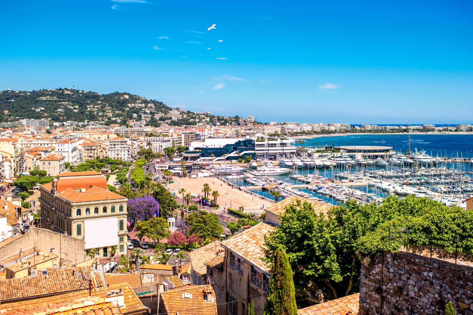 Cannes: Going beyond the famous film festival