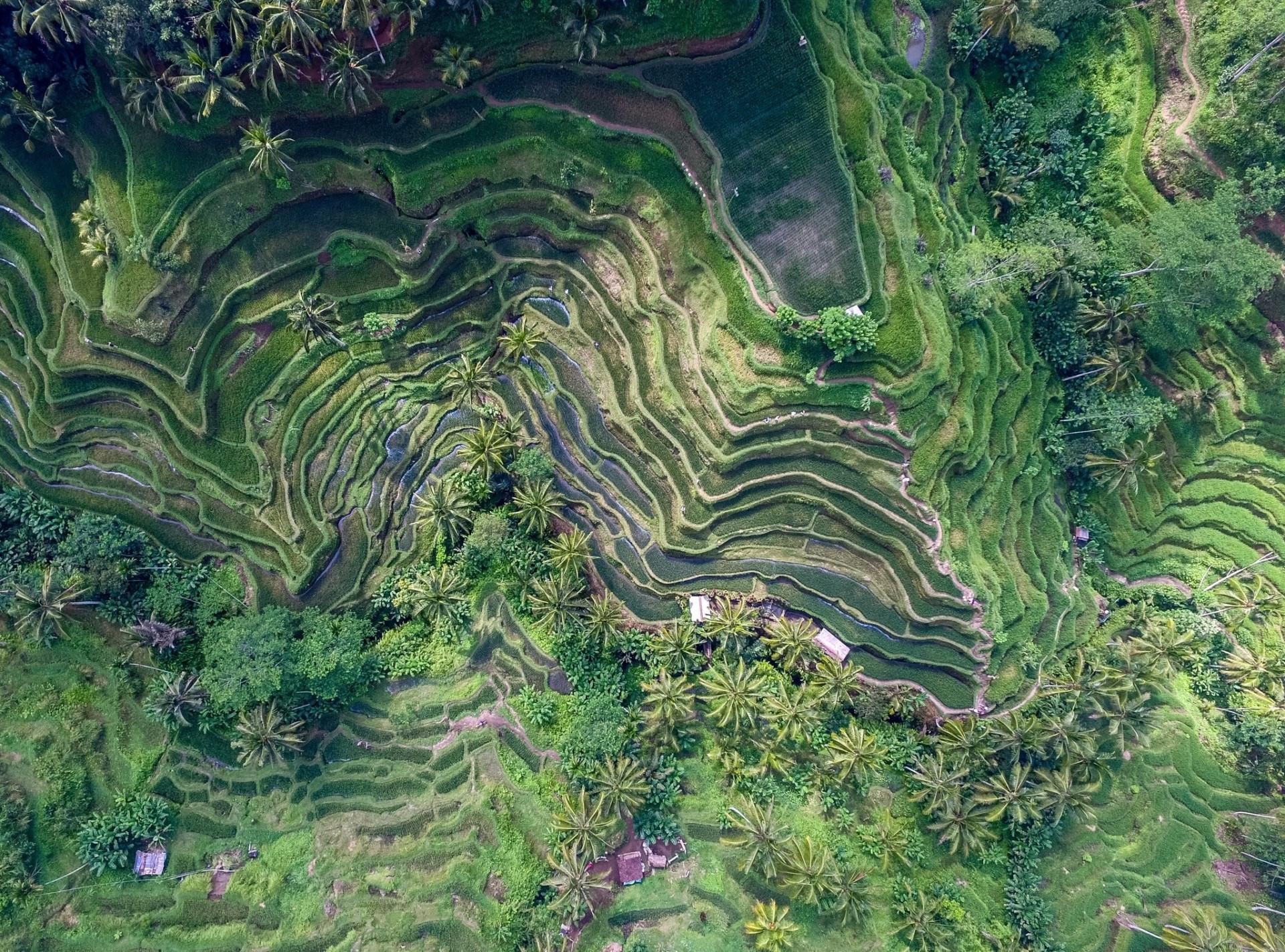 Verdens mest betagende landskaber set oppefra