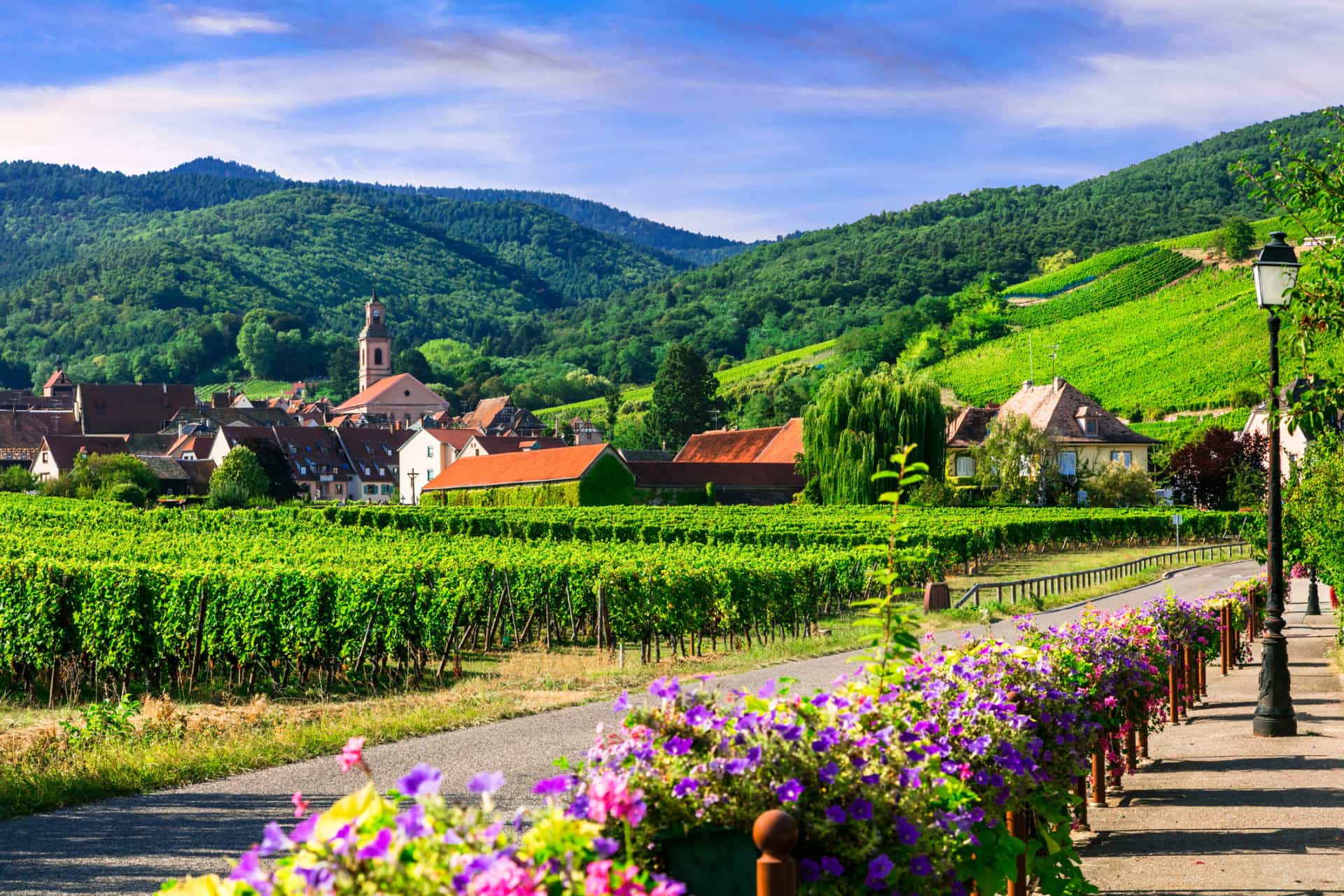 France vs. Croatia: winning landscapes from both nations