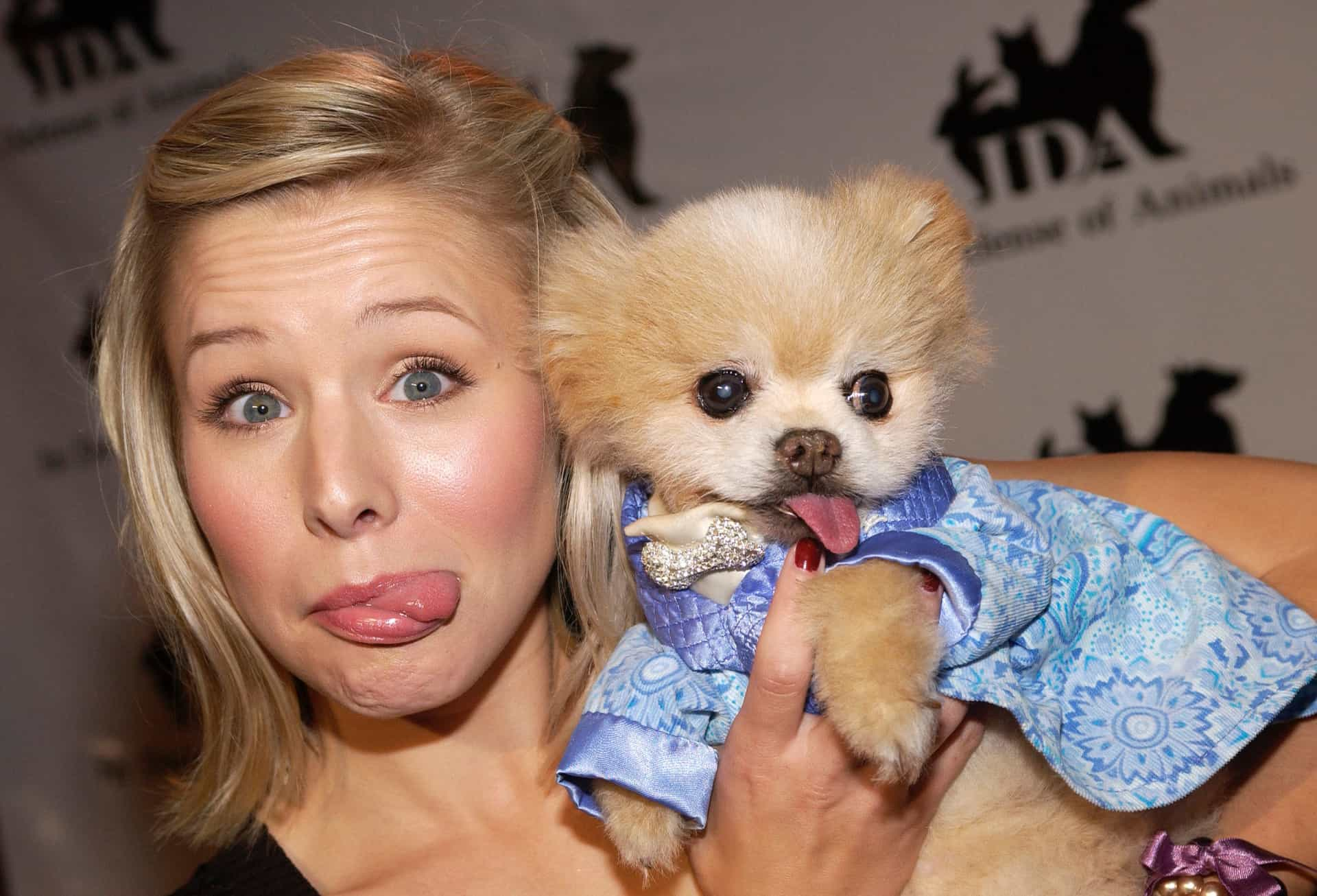 Ridiculously hilarious tweets that prove Kristen Bell has no limits