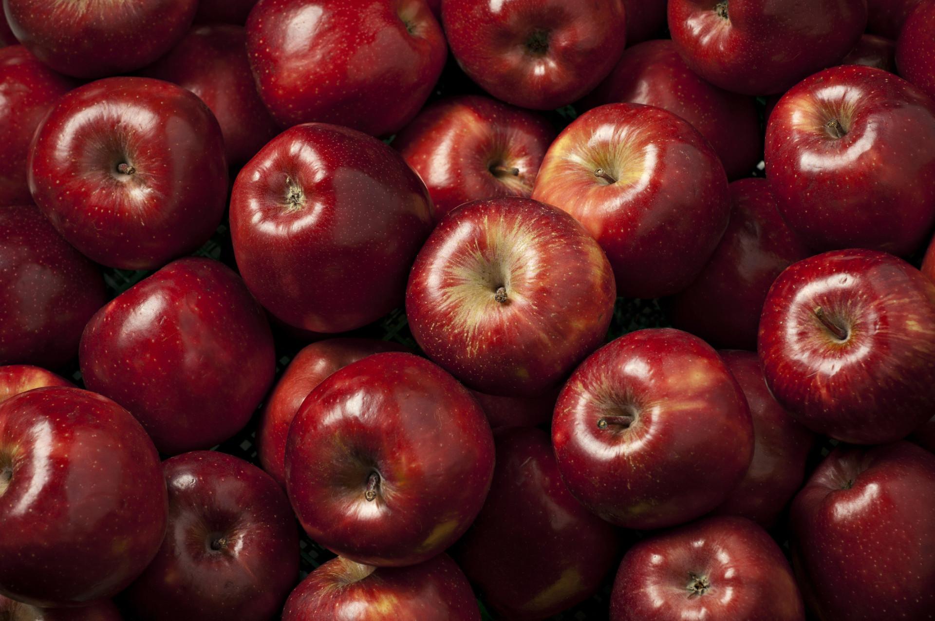 Saiba quanto os alimentos impactam no aquecimento global!