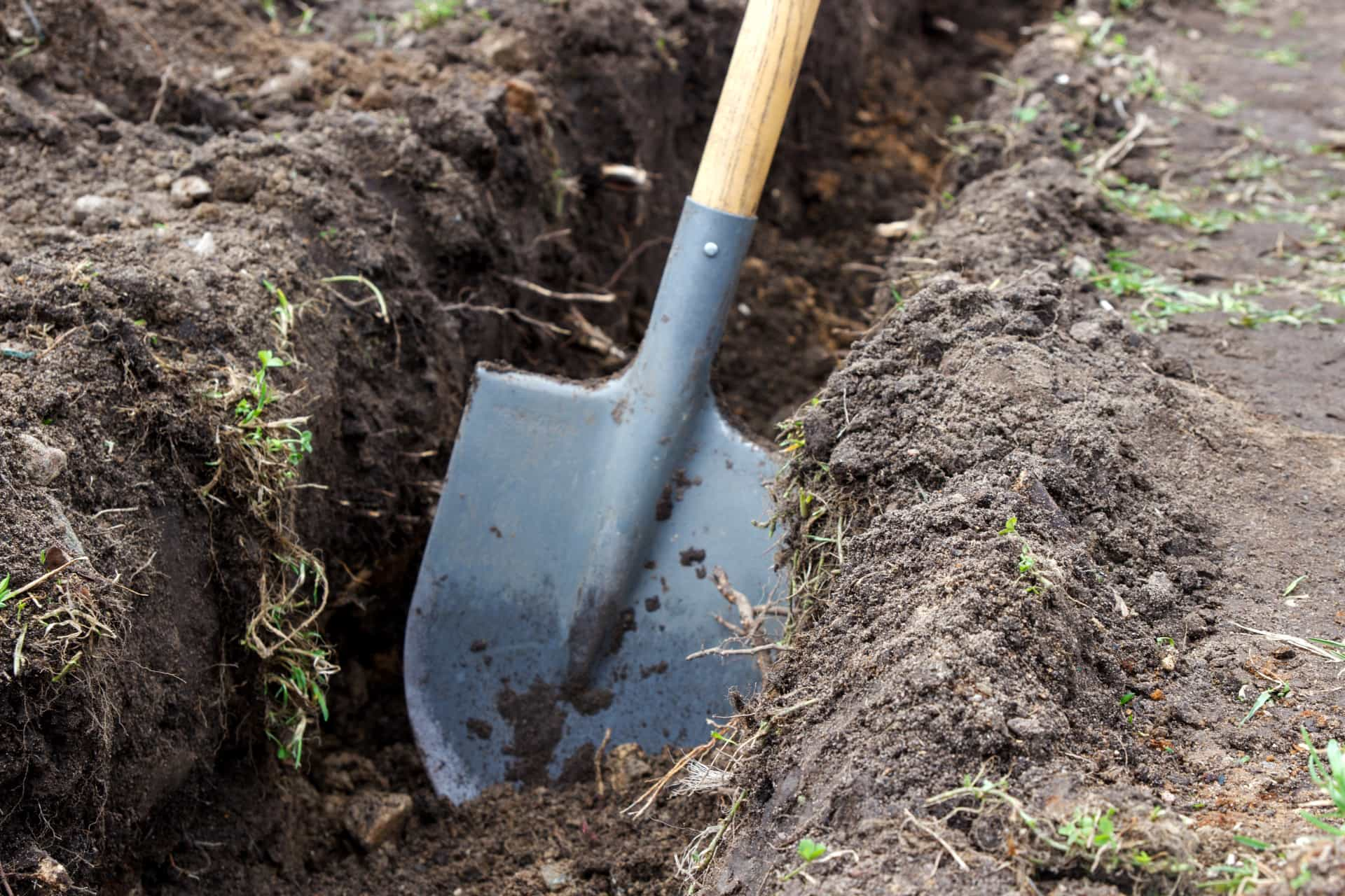 Tips and tricks to prepare your garden for spring