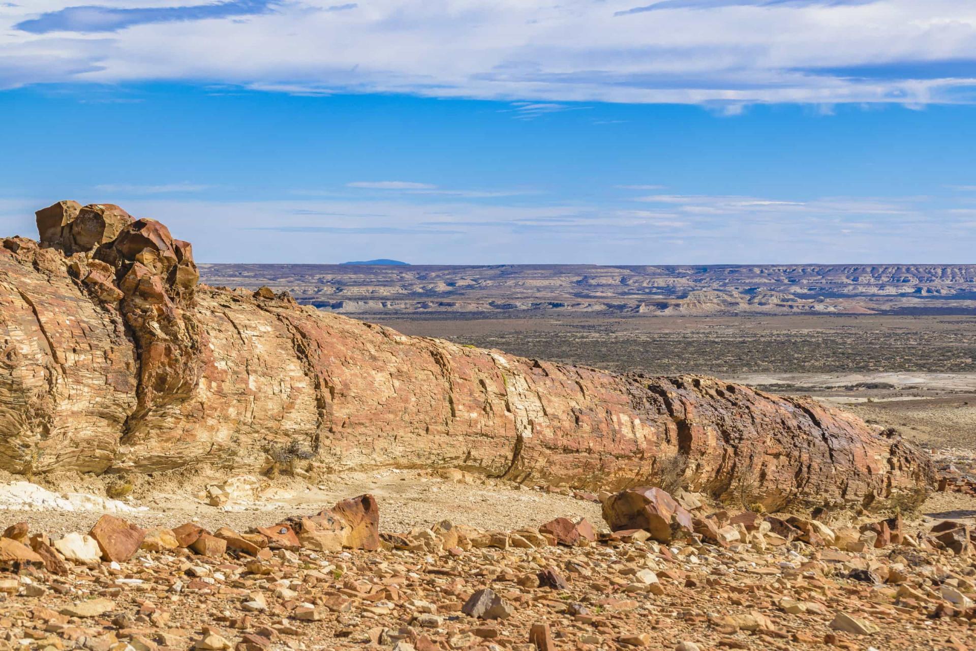 Dejting av stenar och fossil